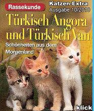 Katzen-Extra4b Rassekunde
